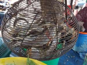 Dried fish is always a delicacy among the natives